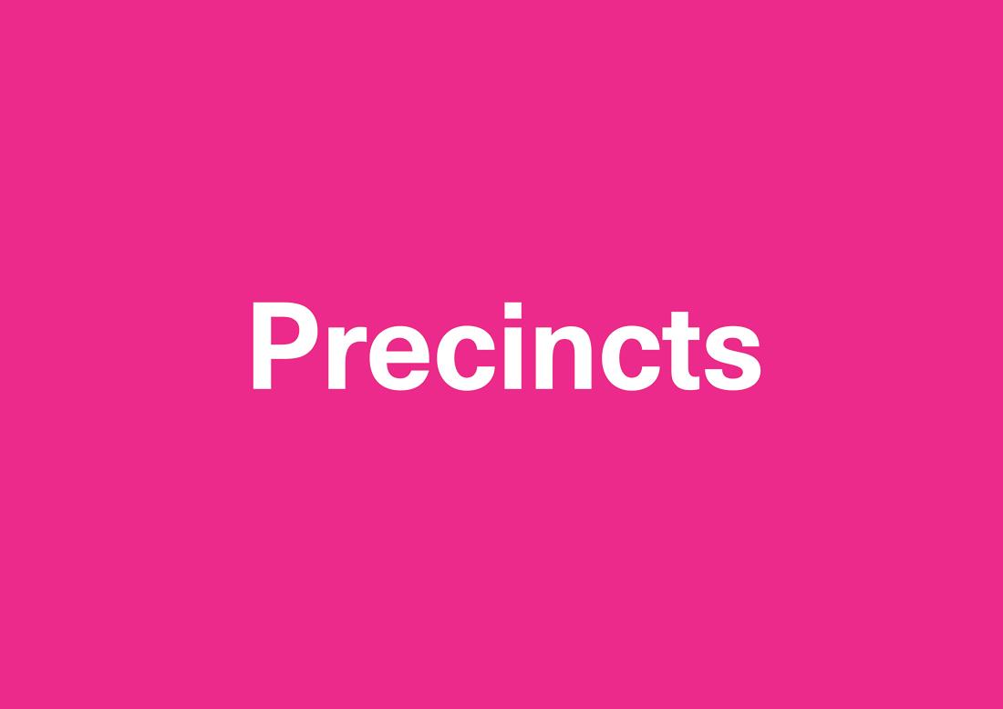 Precincts_WEB
